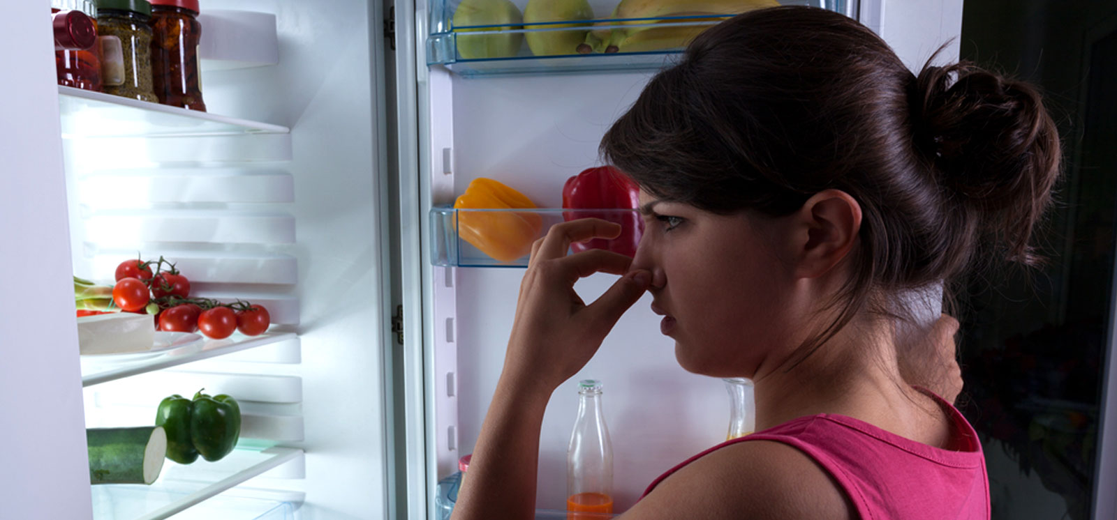 HOW TO REMOVE ODOUR FROM A REFRIGERATOR – SMELLY FRIDGE